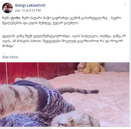 ფისომოყვარულის სულისშემძვრელი პოსტი, რომელშიც აღწერილია ვეტერინარის დაუდევრობით გამოწვეული ცხოველის დაკარგვის შესახებ